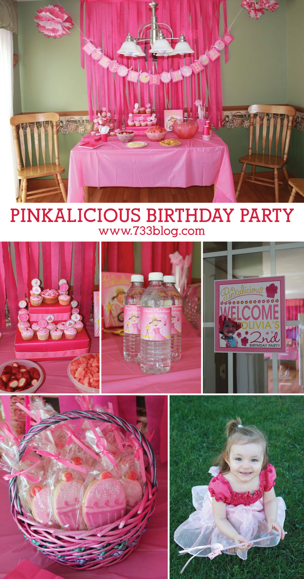 DIY Pinkalicious Birthday Party