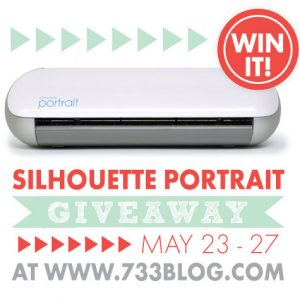 Silhouette Promotion and Portrait Giveaway