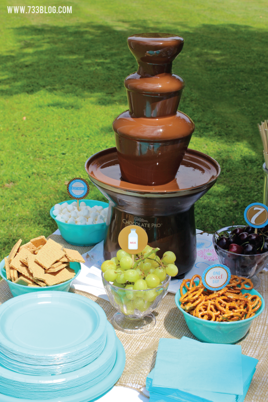 Chocolate Fountain at a Milk and Chocolate Party