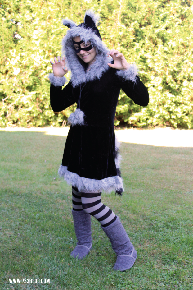 Teen Raccoon Costume