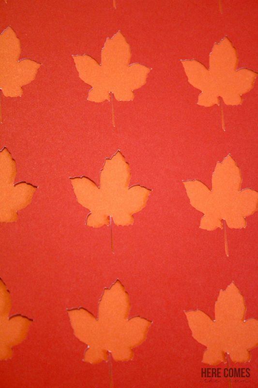 Fall-Leaves-Specimen-Art-1