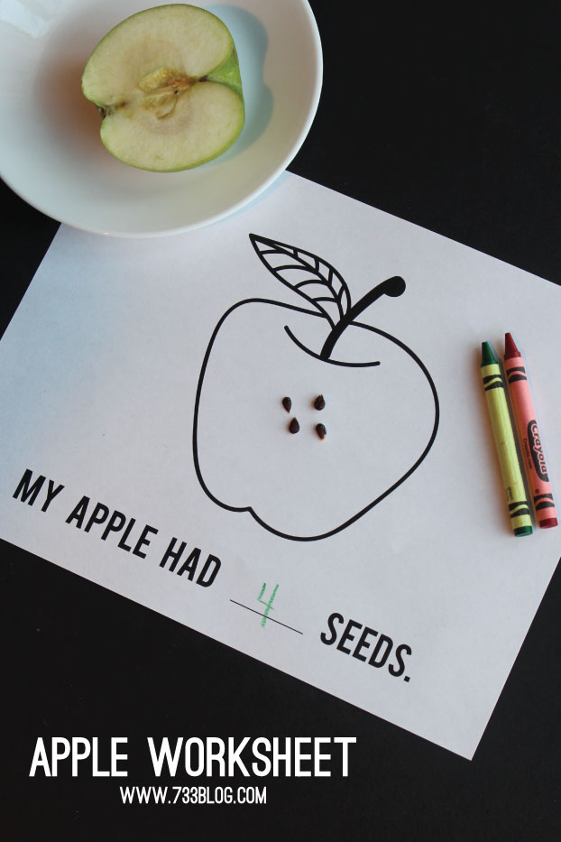 Apple Activity Worksheet