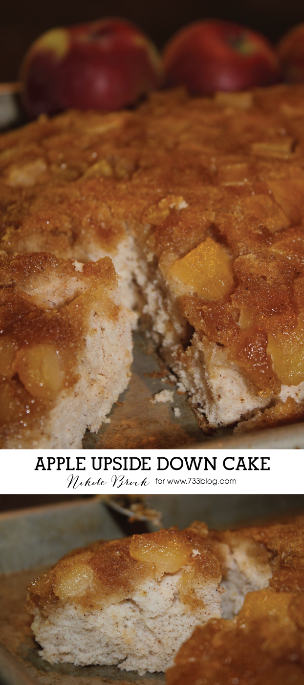 Apple Upside Down Cake Recipes With Fresh Apples