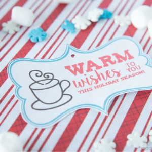 Warm Wishes Holiday Gift Tag Free Printable