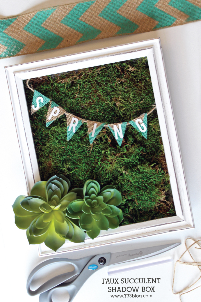 DIY Faux Succulent Shadow Box