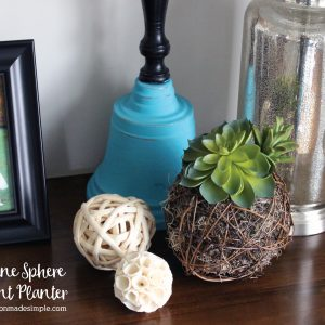 DIY Grapevine Sphere Succulent Planter - Easy to make!