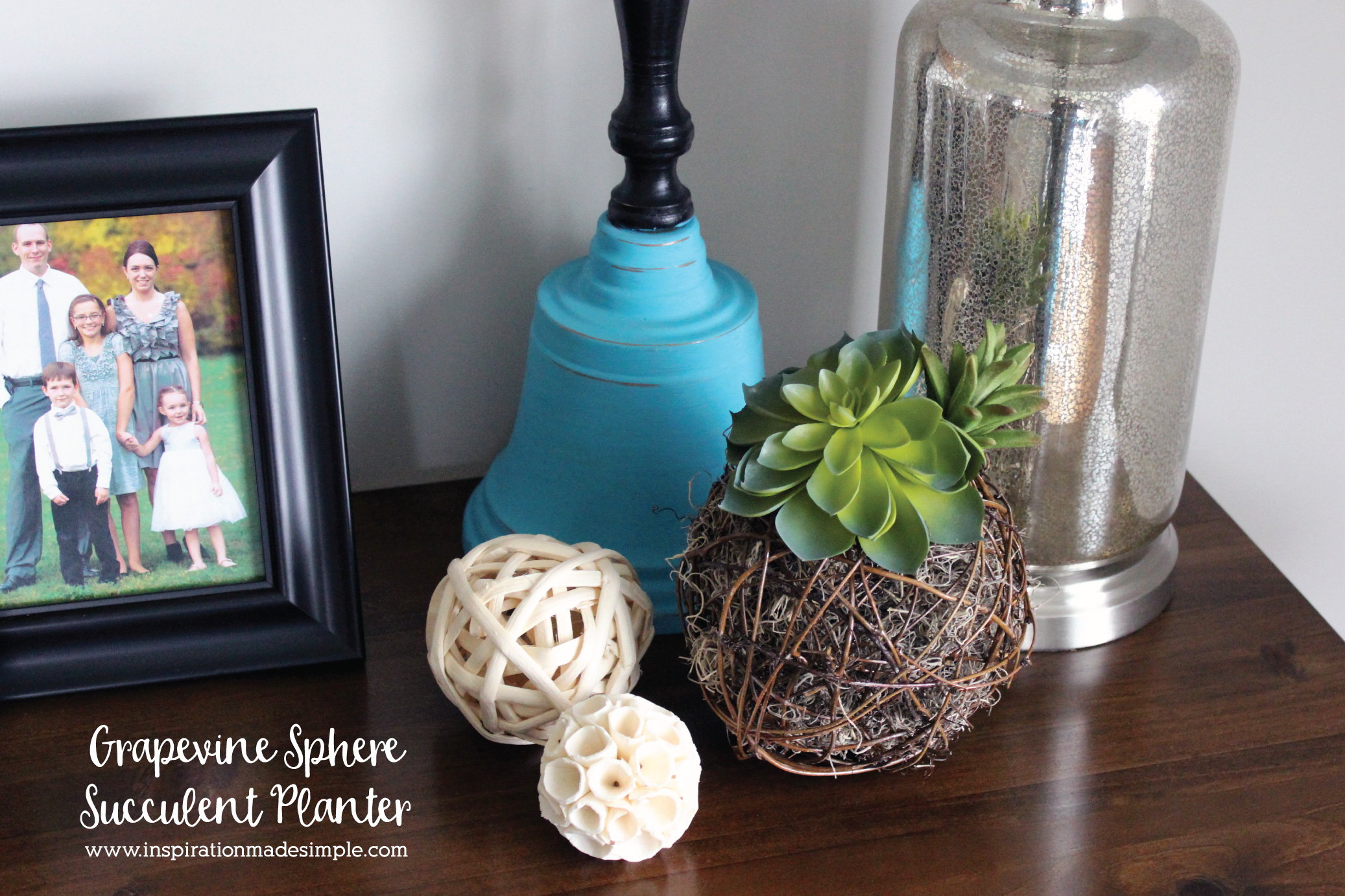 DIY Grapevine Sphere Succulent Planter