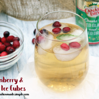 Fresh Cranberry and Mint Ice Cubes