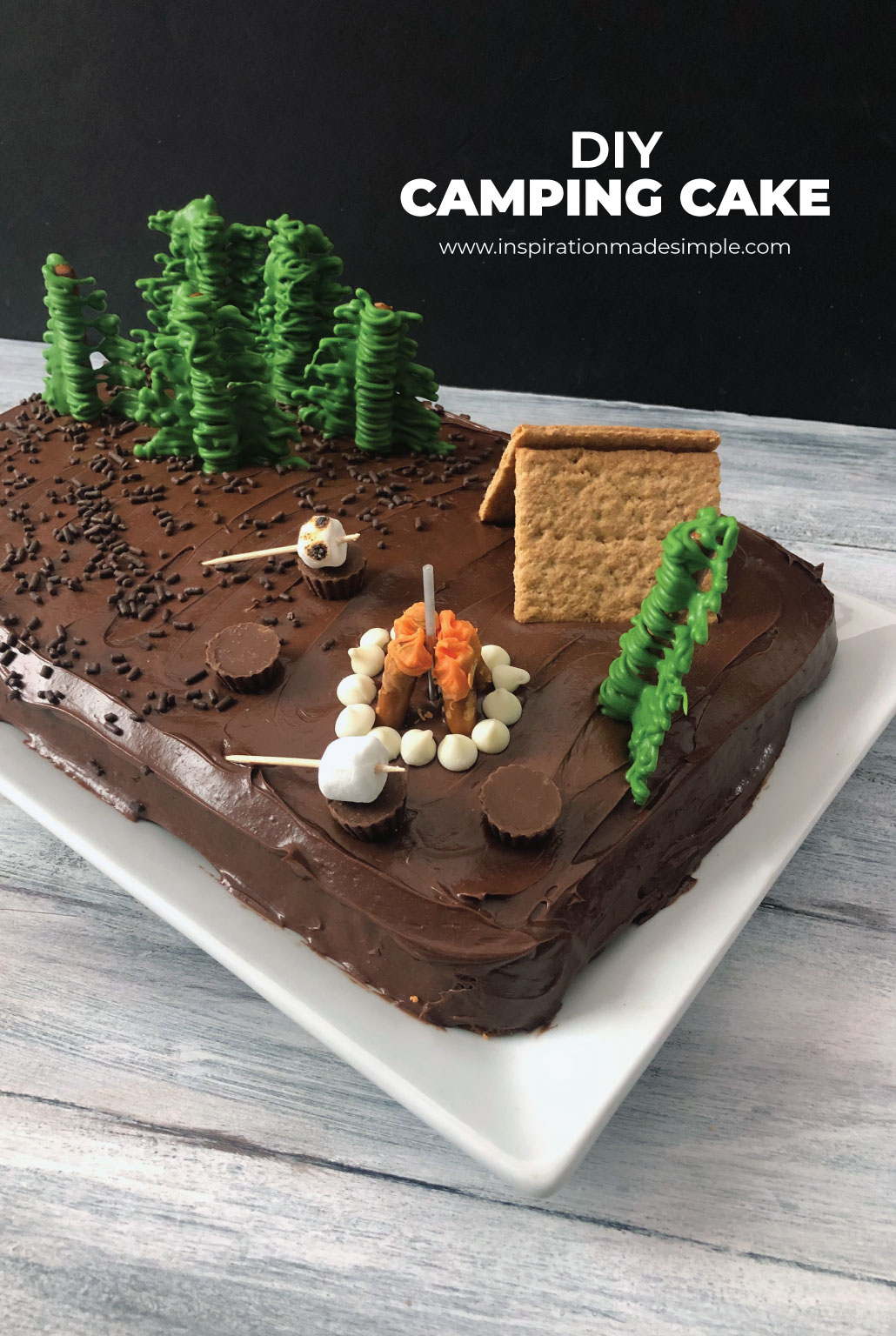 Make a simple DIY Camping Cake for a Camping Birthday Party!