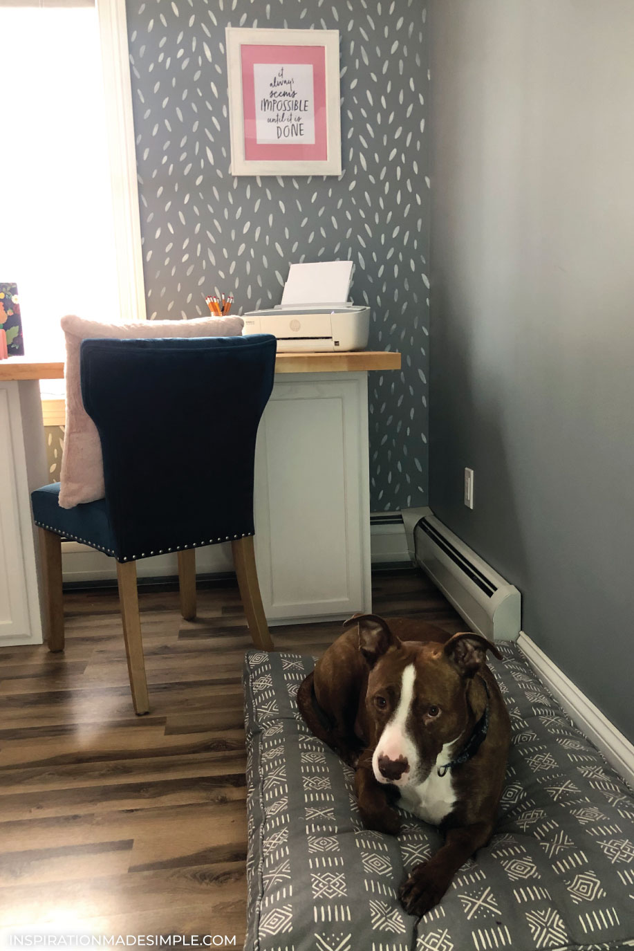 Dog Friendly Office Space